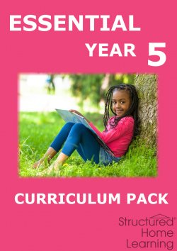 New Essential Year 5 Curriculum Pack